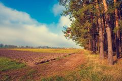 农村风景早晨 在森林附近的可耕的领域 库存图片