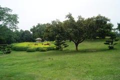 农村风景 免版税库存照片