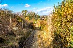农村,森林公路,下降在庭院和森林秋天, 11月,斯洛伐克之间 免版税图库摄影