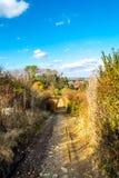 农村,森林公路,下降在庭院和森林秋天, 11月,斯洛伐克之间 库存照片