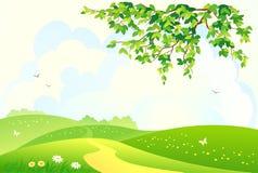 农村绿色的横向 免版税库存照片