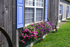 农村barnboard的房子 免版税库存图片