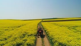 农用拖拉机,美好的春日鸟瞰图在油菜籽领域的 股票视频