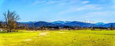 农田全景在Matsqui堤附近的在Abbotsford和使命镇在不列颠哥伦比亚省,加拿大 库存图片