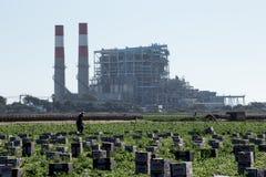 农田劳工在能源厂前面的采摘产物 库存照片