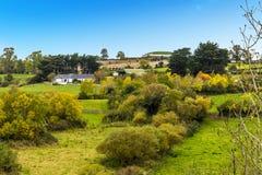 农田和领域在纽格莱奇墓,爱尔兰附近 免版税库存照片
