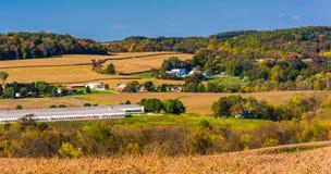 农田和绵延山及早秋天视图在农村约克 图库摄影