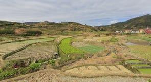 农田在山区 免版税库存照片