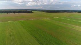 农田寄生虫空中英尺长度  晴朗的日 股票录像