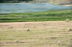 农田干草堆美国 库存照片