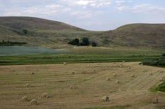农田干草堆美国 库存图片