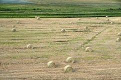 农田干草堆美国 免版税库存图片