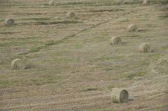 农田干草堆美国 免版税库存照片