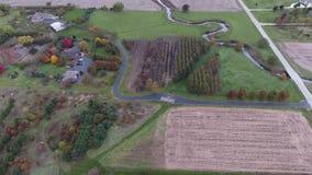 农田庄稼领域看法在美国中西部,伊利诺伊 股票视频