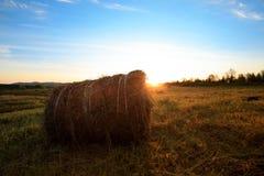 农田的干草堆有蓝色多云的 库存照片