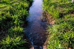 农田的灌溉方式 图库摄影