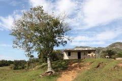 农田视图在特立尼达,古巴 免版税库存照片