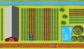 农田顶视图有庄稼的 向量例证