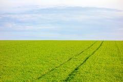农田-有天空的草甸 免版税库存照片