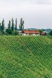 农舍在南施蒂里亚 免版税库存照片