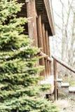 农舍在有树的森林里在入口 库存照片
