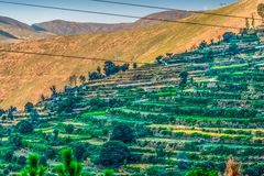 农舍看法在山坡的与露台的农业 免版税库存图片