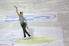 冠军形象isu滑冰的世界 库存照片