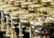 冠军的很多奖杯 免版税库存照片