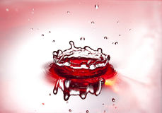 冠液体红色 图库摄影