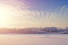 冬天上色了与树和froster河的风景冷光雾的在日落 图库摄影