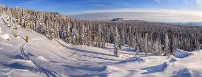 冬天与一个backcountry滑雪者的山场面 免版税库存图片