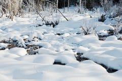 冬天与冷淡的树的领域风景由软的在温暖的口气的日落轻的多雪的风景场面点燃了 免版税库存照片
