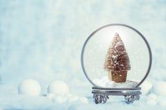 冬天与圣诞树的雪地球 图库摄影