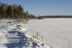 冬天与多雪的树和冻湖的视图风景 图库摄影
