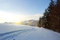 冬天与树和路的日落风景 免版税库存图片