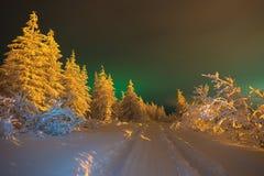 冬天与森林、多云天空和极光borealis的夜风景在taiga 免版税库存图片