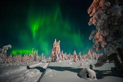 冬天与森林、月亮和北极光的夜风景在森林 免版税库存图片