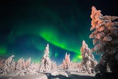 冬天与森林、路和极光的夜风景在树 免版税图库摄影