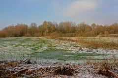 冬天与雪的沼泽风景在富兰德 免版税库存图片