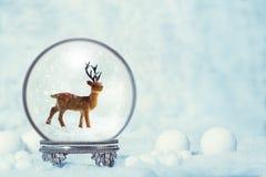 冬天与驯鹿形象的雪地球 免版税图库摄影