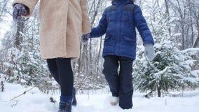 冬天乐趣和旅行概念 走在多雪的森林里的母亲和儿子 股票视频