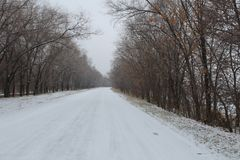 冬天乡下路 库存图片