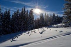 冬天传说 库存照片