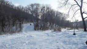 冬天俄罗斯森林 免版税库存图片