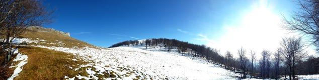 冬天全景山的 库存图片