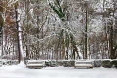 冬天公园。 用雪和云杉的结构树包括的长凳。 免版税库存图片