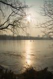 冬天公园北京 免版税库存照片