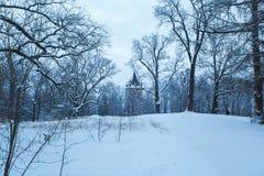 冬天公园在用雪包括的晚上 免版税库存照片