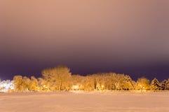 冬天公园在用雪包括的晚上 免版税库存图片