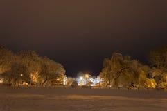 冬天公园在用雪包括的晚上 免版税图库摄影